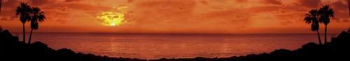 пляжи  1537