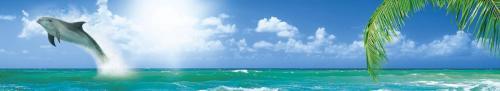 пляжи  3402