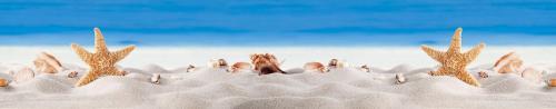 пляжи  8321