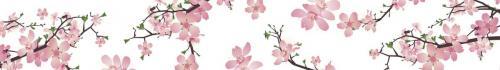 цветы  171 1