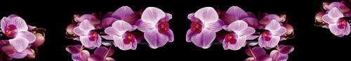 цветы  196