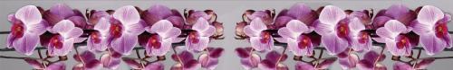 цветы  196 1