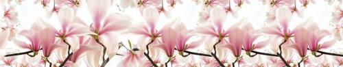 цветы  663