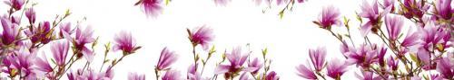 цветы  664