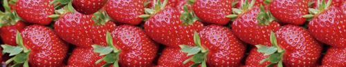 фрукты  137
