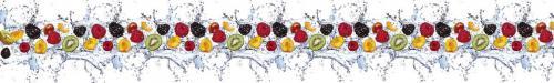 фрукты  4281