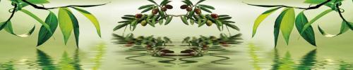 оливки  2127 1