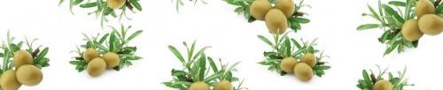 оливки  535