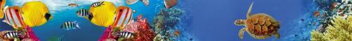 подводный мир  1495